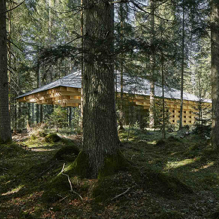 Meditationshaus im Wald